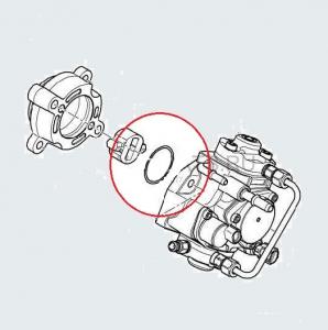 Кольцо уплотнительное (прокладка) ТНВД Евро 4 Пежо Боксер 3 Ситроен Джампер III