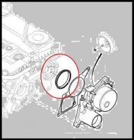 Кольцо уплотнительное вакуумного насоса (помпы) Пежо боксер 3 Ситроен Джампер III