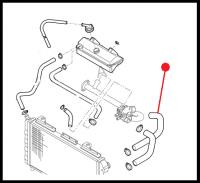Патрубок радиатора верхний Фиат Дукато RESTYL. BZ/DS (2001-2006) 244 RUSSIA (2008-2011)