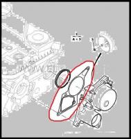 Прокладка вакуумного насоса двигателя 2.2 Puma Фиат Дукато 250 Пежо Боксер 3 Ситроен Джампер III
