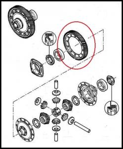 Шестерня дифференциала (главной передачи) КПП шестиступка Фиат Дукато 250 Пежо Боксер 3 Ситроен Джампер III (под вторичный вал 13х68)